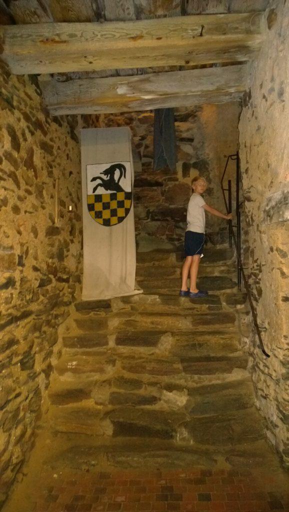 Vapensköld (släkten Stenbock) tryckt på väv ger en mer medeltida känsla