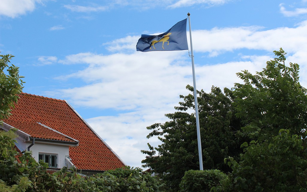 Ölandsflaggan på flagstång